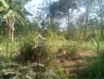 Jl. Solo Ampel tanah (1)