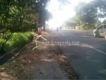Jl. Solo Ampel tanah