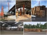 Boyolali pabrik (2)